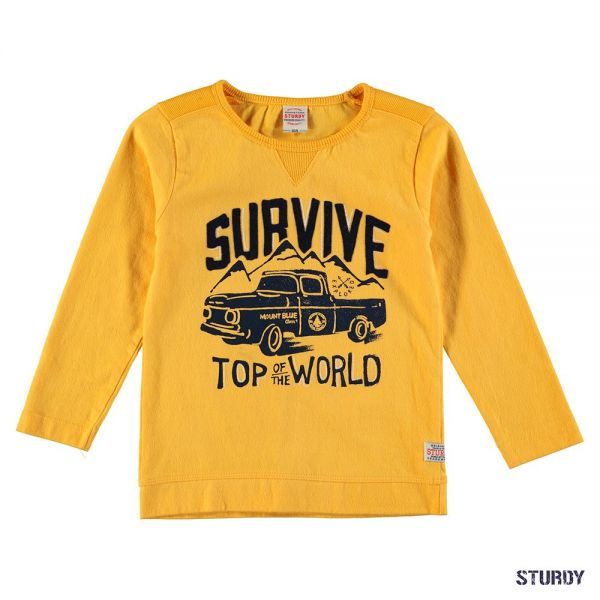 Sturdy Shirt Longsleeve Junge gelb