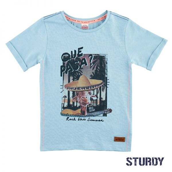 Sturdy Festival T-Shirt Junge hellblau